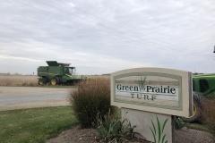 about-green-prairie-turf